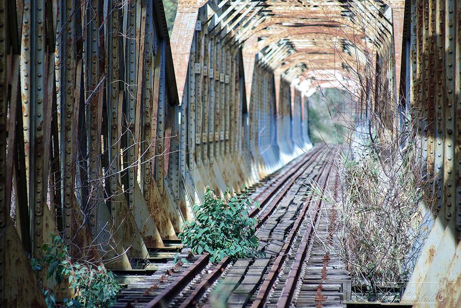 Γέφυρα Αλφειού...