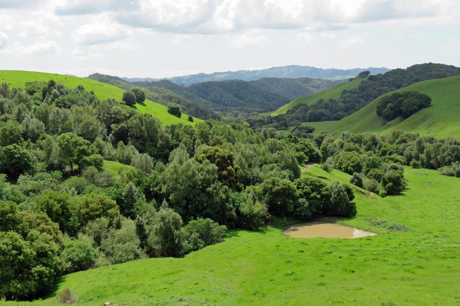 Briones Regional Park