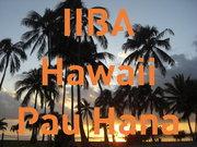 IIBA Hawaii Chapter Pau Hana