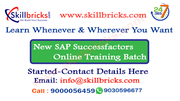Best SAP Success Factors Online Training Sevices at SkillBricks.com