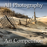 All Photography Online Art Competition