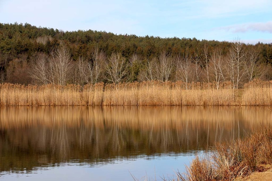 Hársas tó (8)