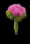 Floral Arranging Classes at Ovando!