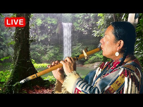 Native American Flute Music and Rain LIVE - Relaxing, Sleep, Meditation, Healing, Study