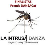 Finalistas premios DANSACat