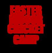 Highgate Cricket Club INDOOR EASTER CAMP