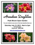Arcadian Daylilies - Peak Bloom Open Garden