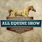 All Equine Show