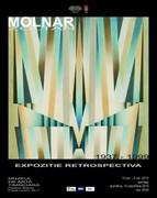 Expozitia retrospectiva Molnar Zoltan