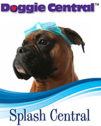 Open House for Splash Central, new dog swimming pool at Doggie Central