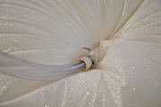 Laura Vitale // White Sands