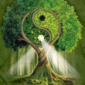 "Webinar ""Elisir di Ecopsicologia"": EcoTuning e crescita personale"