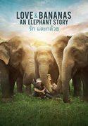 Love And Bananas: An Elephant Story
