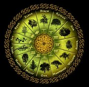 Celtic Tree Month: Hazel Moon