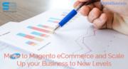 Magento Website Advantages