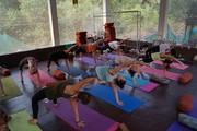 300 Hours YTT in Dharamsala | Mahi Yoga
