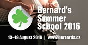 Bernard's Summer School 2016
