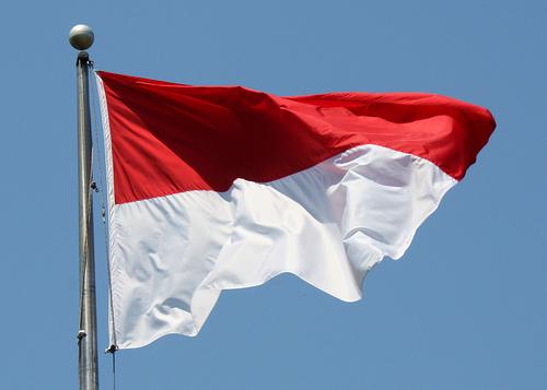 Indonesia Surveyors