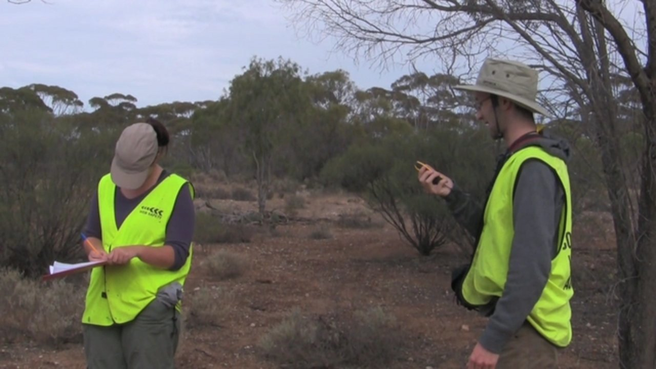 Guide to Surveying Wombat Burrows