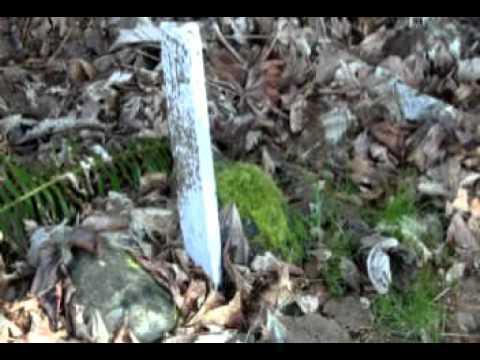 Property pins, property markers, surveyor or survey stakes on Salt Spring