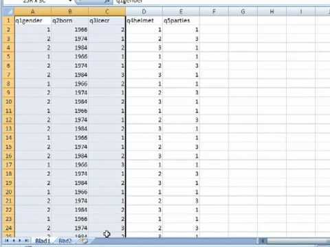 Excel Tips: Survey data, tables and exporting data to SPSS