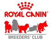 Caledon Kennel Club