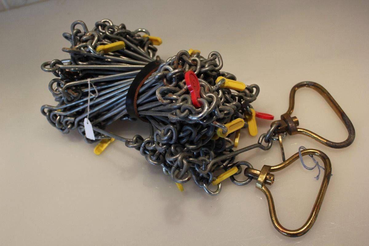 land surveyors' chain