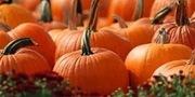 The Great Pumpkin Taste Off at New Leaf
