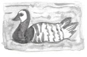 barnacle_goose