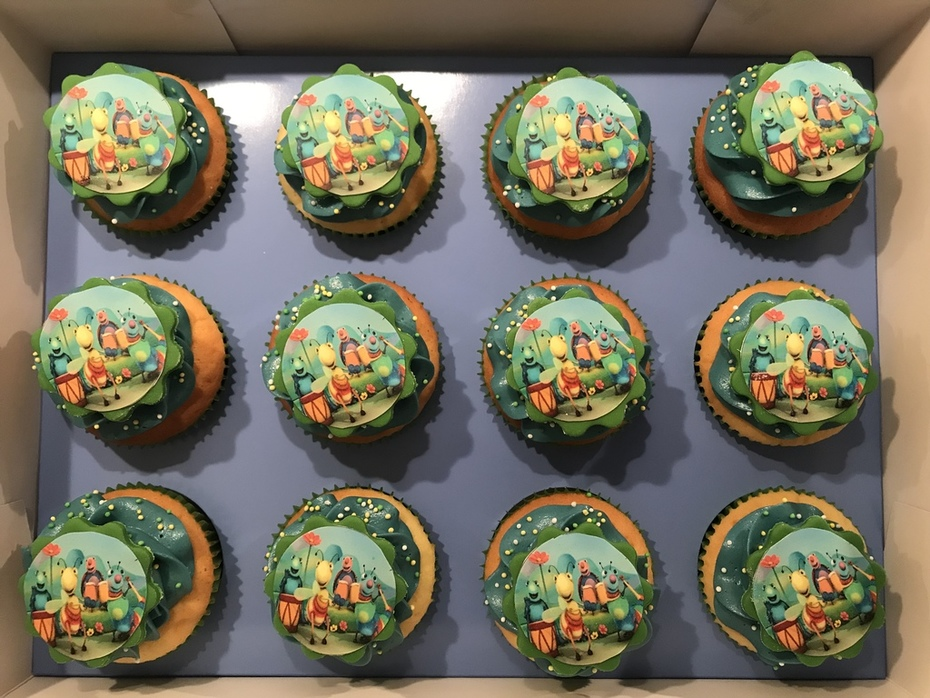 Big Bugs Band cupcakes