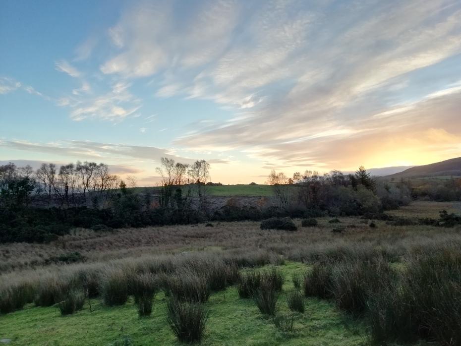 Sunrise in November east pasture, Carrowcullen, the Old Irish Farmhouse