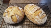CRUSTY SOUR DOUGH BREAD 1st Cook with Cathie's Starter