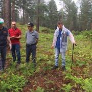 forestry activities in Turkey