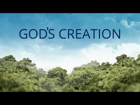 Nature | God's Creation by Nimai |भगवान की सृष्टि | (Official Video)