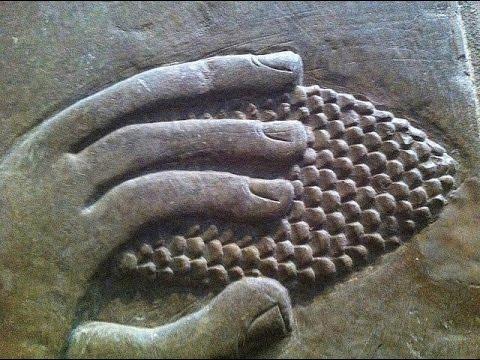 Wise as Serpents - ROBERT SEPEHR
