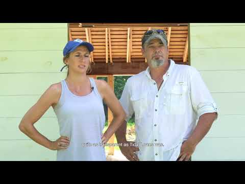 TEXAS REAL ESTATE INVESTMENT- POWER COUPLE FIX AND FLIP COMPLETE GUT RENOVATION