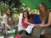 Creating A Forest Garden (15 week course on Tuesdays)