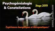 Stage Psychogénéalogie et Constellations