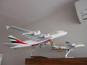 1:100 PacMin & 1:200 ALP Lysia A380s