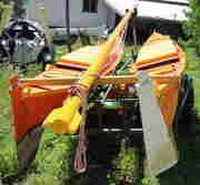 Orange rear
