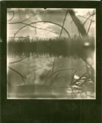 sick landscape 03