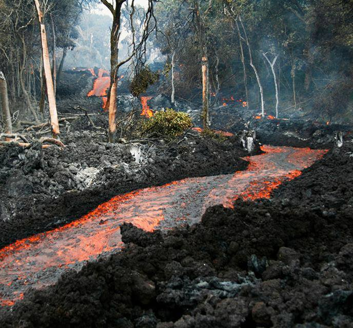 Volcanic Flow Through Forest