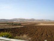 Near Hebron
