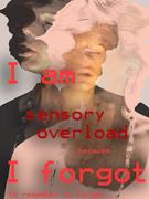 Verena Wendel_sensory_overload_WDYDWYD?