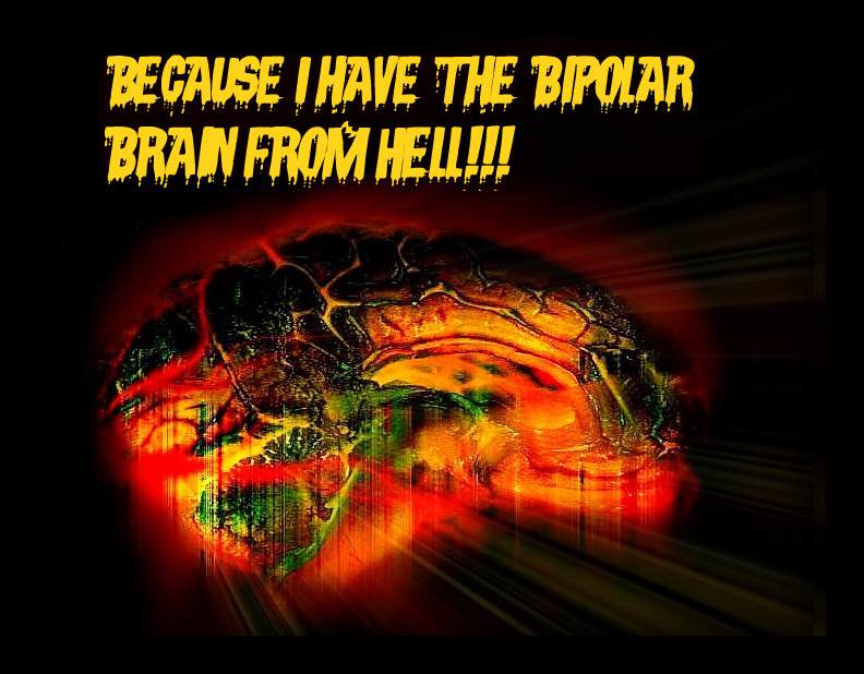 Because I have the bipolar brain from Hell!!!