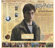 Harry Potter double