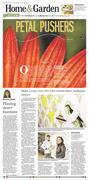 The Desert Sun // Home & Garden section cover