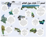Largest forests