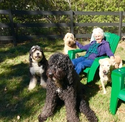Mom and her Grandpups