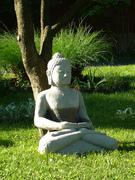 Buddha on a May Morning